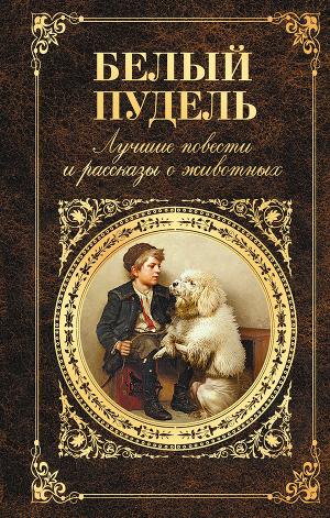 Книга будьте счастливы эндрю мэтьюз читать онлайн