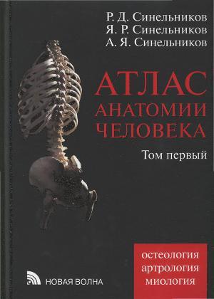 Атлас анатомия человека синельников том 2 скачать pdf